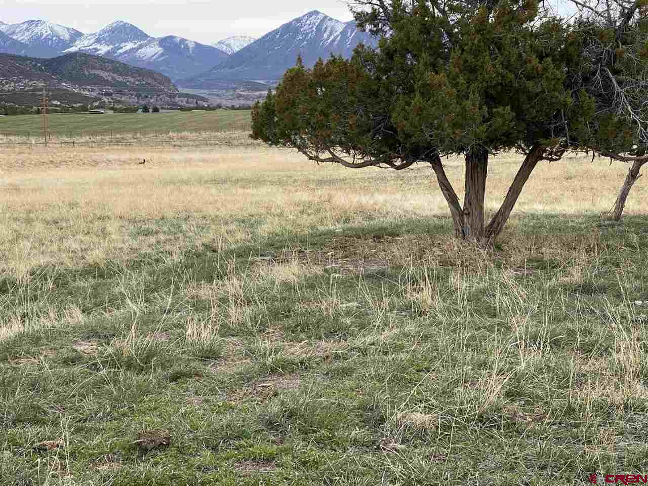 Acreage with good fencing completely surrounding property. Water storage tank on site, water tap is paid, but not installed and comes with the property. Run off irrigation water is sometimes available.  Million dollar views of the West Elk Range of the Colorado Rocky Mountains. Tons of great fishing, and recreation all around.  The deer in the photo are not professional models, they are just passing through.  Come check out this affordable property with fantastic views and see for yourself.  The pasture is nice and the land has a gentle slope for easy building and livestock raising.