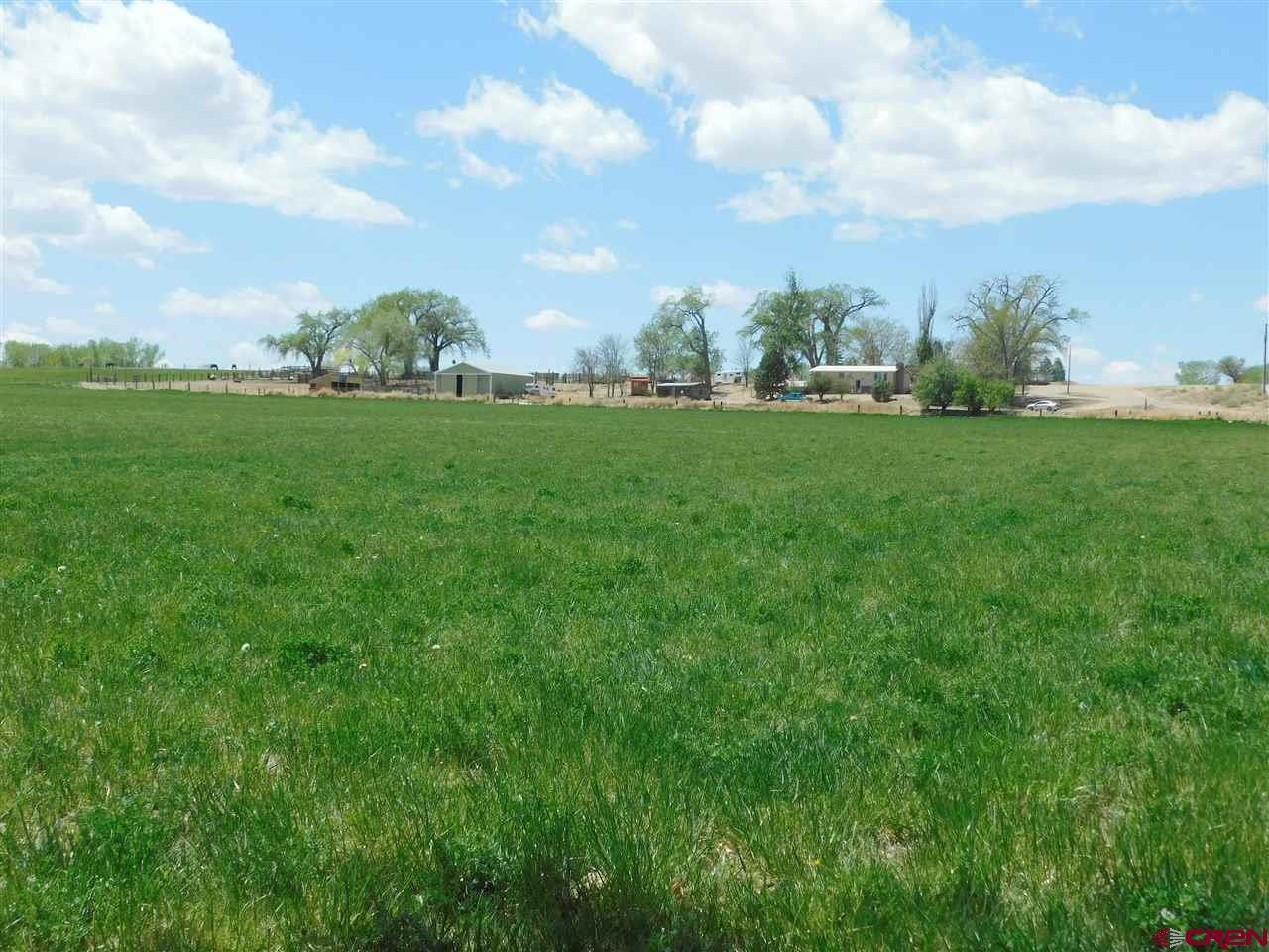 35 acre ranchette with fantastic views! The owners have painstakingly worked to create this ideal equestrian property. Plenty of grazing pastures; fenced/cross fenced, 4 stall loafing barn, hitch rail, large tack room and a MiraFount automatic waterer. Wise creek flows through the property and BLM riding is close by. 22.6 shares of Uncompahgre Valley Water Users irrigation water keeps the hay production bountiful. 25-40 tons in just the front 11 acre pasture (3 cuttings). Dog kennels, chicken coop, garden shed, large metal shop and more. Apricot and cherry trees plus a walnut tree. Covered back patio and fenced backyard. The home and outbuildings have been greatly improved and a downstairs bathroom added. Open floor plan with master bedroom on the main level. Wood burning stove is a welcomed feature. This very private gorgeous setting is a rare find!