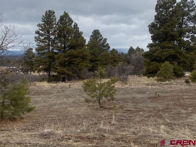 MLS# 767422 - 1 - 19 Park Avenue, Pagosa Springs, CO 81147