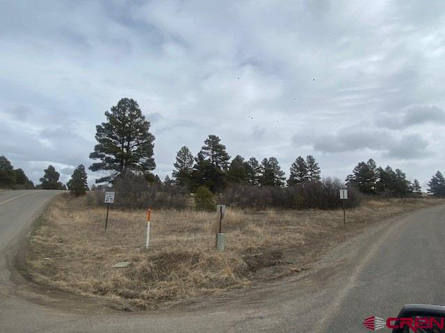 MLS# 767422 - 10 - 19 Park Avenue, Pagosa Springs, CO 81147