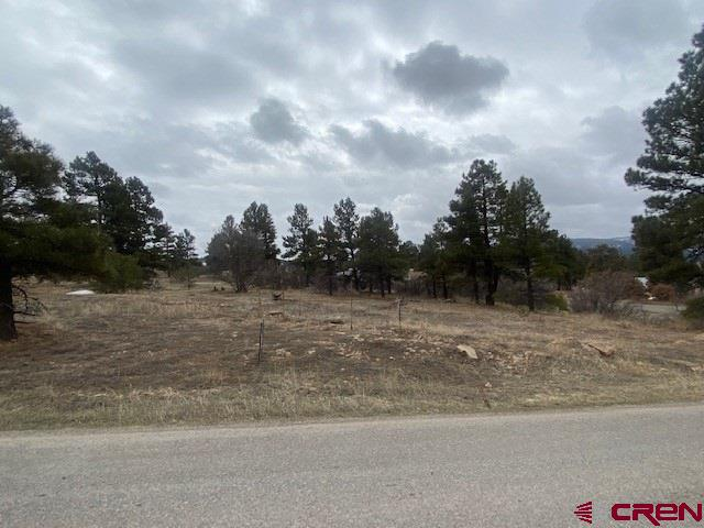 MLS# 767422 - 12 - 19 Park Avenue, Pagosa Springs, CO 81147