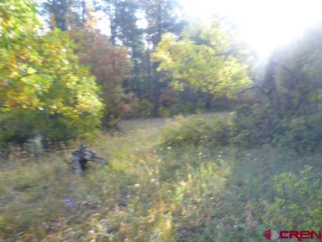 1142 Eight Mile Loop