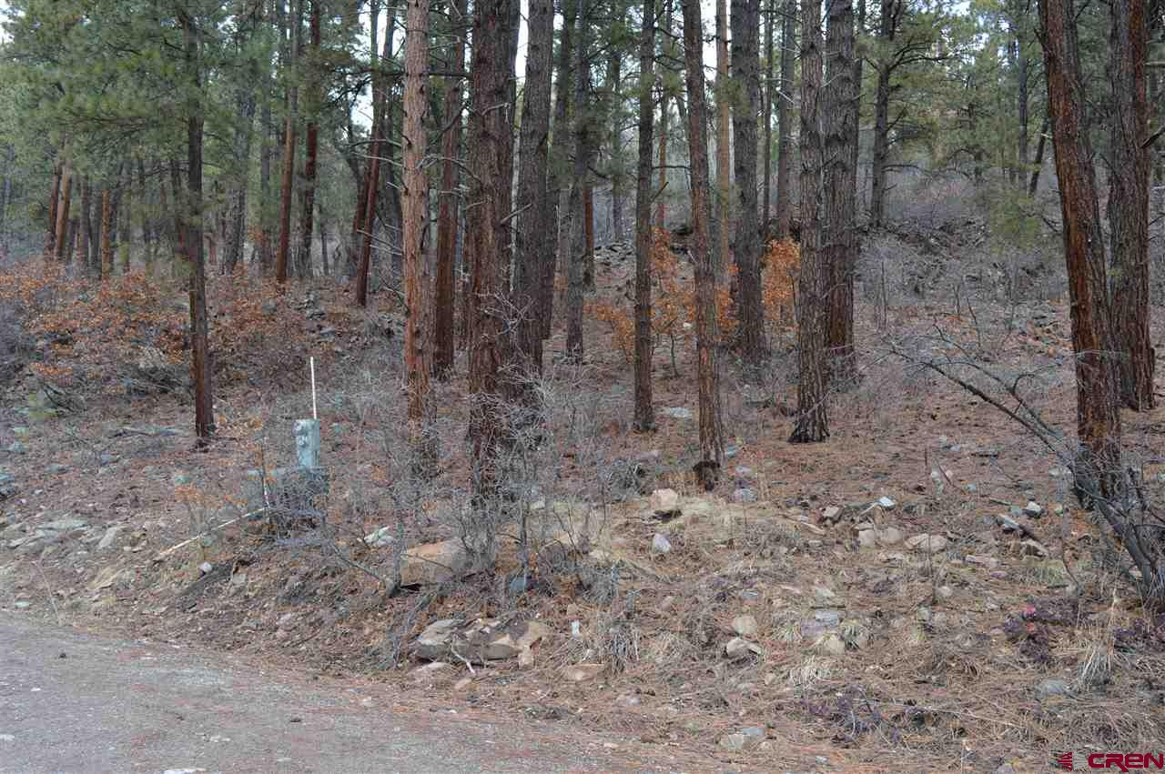 MLS# 767606 - 7 - 286 Fawn Drive, Bayfield, CO 81122