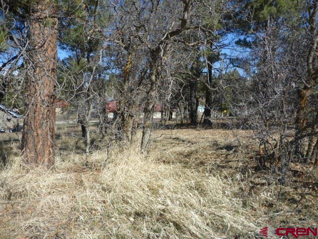 MLS# 767734 - 2 - 44 S Driver Court, Pagosa Springs, CO 81147