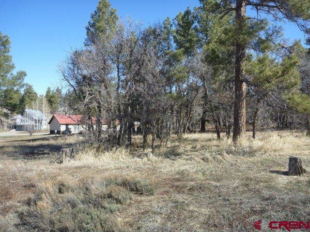 MLS# 767734 - 6 - 44 S Driver Court, Pagosa Springs, CO 81147