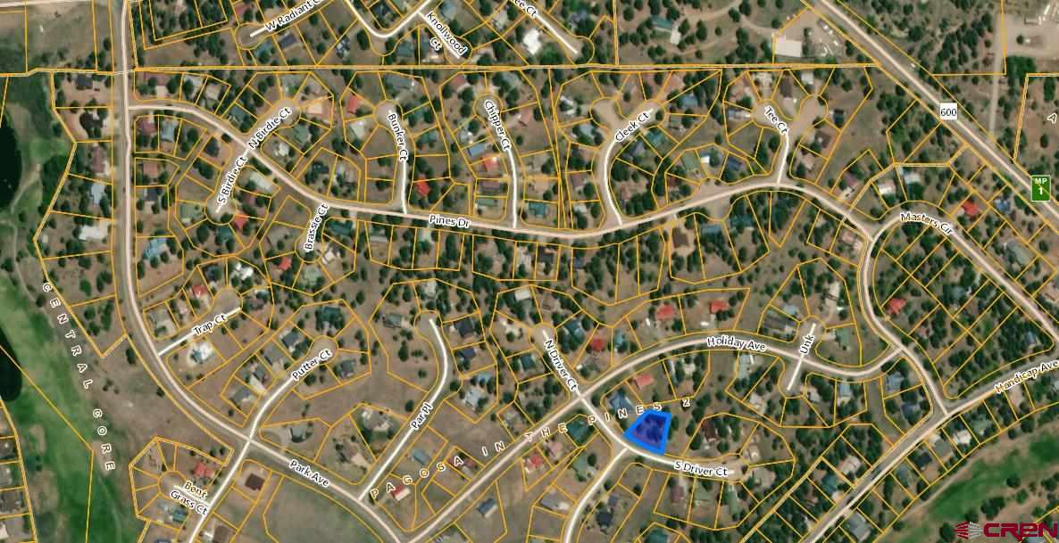 MLS# 767734 - 8 - 44 S Driver Court, Pagosa Springs, CO 81147