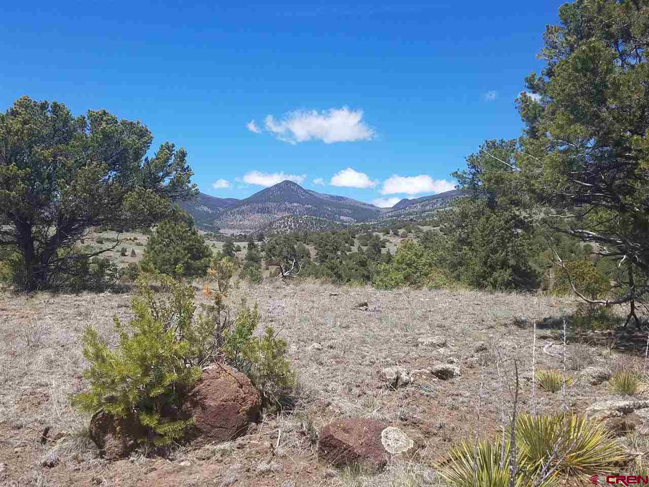 MLS# 767779 - 1 - 47 Silver Thread Circle, South Fork, CO 81154