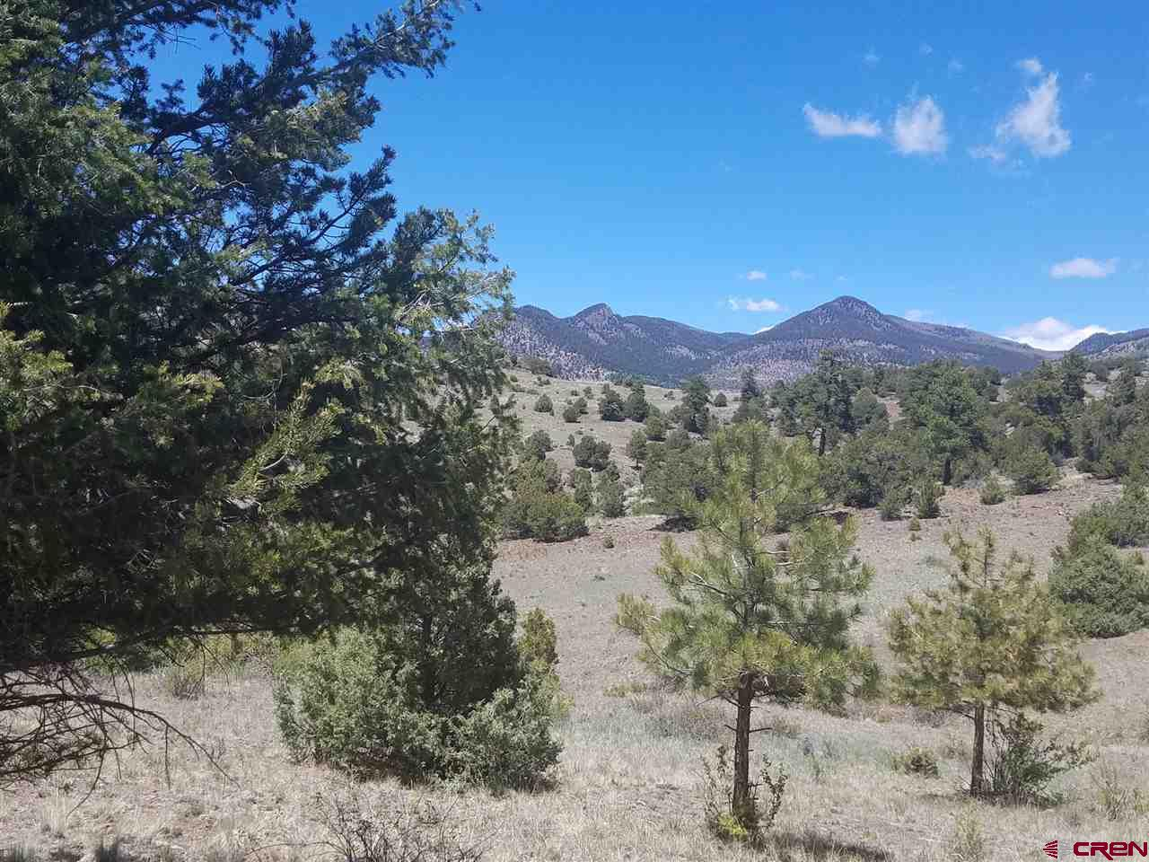 MLS# 767779 - 12 - 47 Silver Thread Circle, South Fork, CO 81154