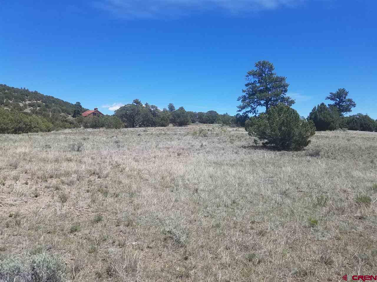 MLS# 767779 - 7 - 47 Silver Thread Circle, South Fork, CO 81154