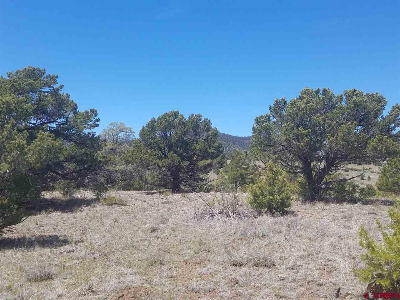 MLS# 767779 - 8 - 47 Silver Thread Circle, South Fork, CO 81154