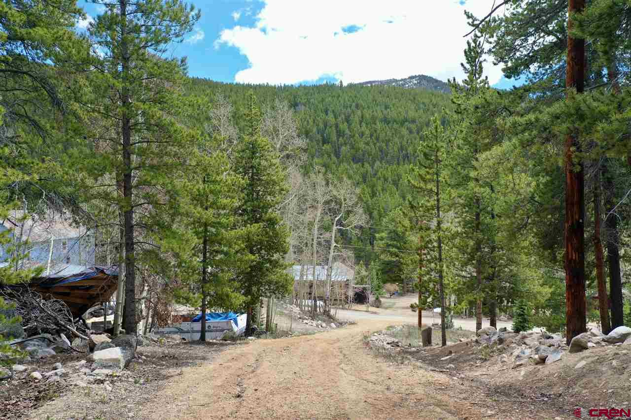 9673 County Road 888, White Pine, CO 81230