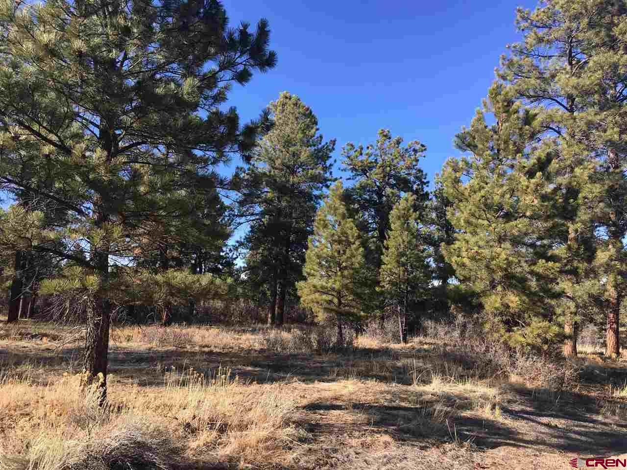 "What a special spot! Majestic Ponderosas, a paved road, easy access and a little over 4 level acres nestled along a beautiful park-like open space.  Utilites are all there including natural gas and a fiber optic high speed internet cable the installation of which is nearing completion. Fisher Canyon South is conveniently located close to the Divide Ranch Golf Course and all that the Town of Ridgway has to offer.  Hike or mountain bike the beautiful trails, fish or boat in the nearby reservoir, ski Telluride or enjoy its many summer concerts, visit the quaint mining town of Ouray and enjoy its shops and restaurants. OR, you can stay at home enjoying your first cup of coffee on the deck in the morning or a glass of wine in the evening listening to the sound of the breeze in the Ponderosas, the birds busy with their day, looking at the incredible ""Colorado Blue"" sky and enjoying life in this exquisitely beautiful corner of the world."
