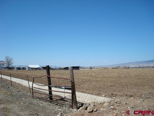 Great farm ground on California Mesa - corner of Hwy 348/E Road  28 shares of Uncompaghre Valley Irrigation.  Certainly could make a great place to build your next home.  360 degree views with no obstructions.