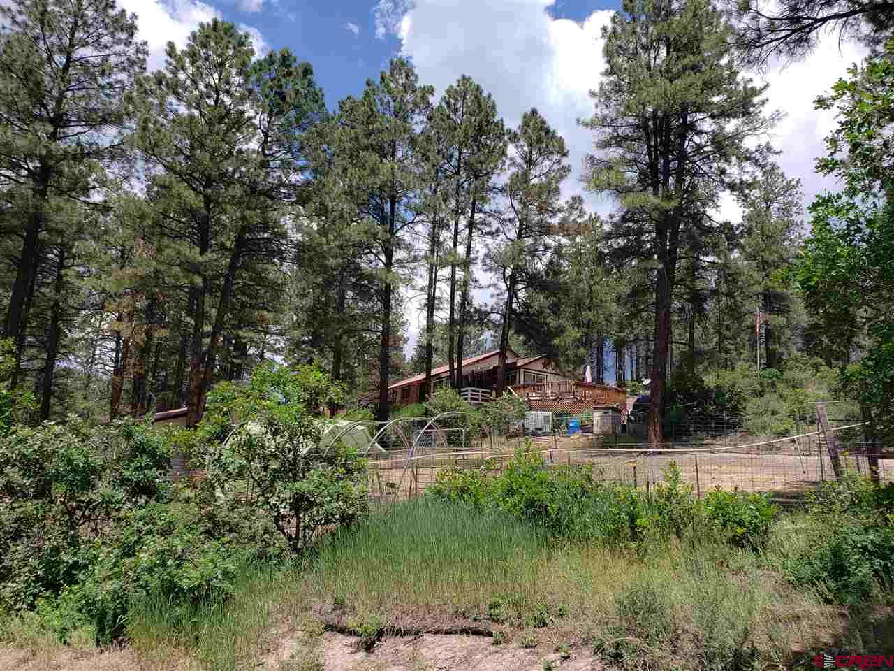 MLS# 768680 - 2 - 38 Spruce Circle, Pagosa Springs, CO 81147