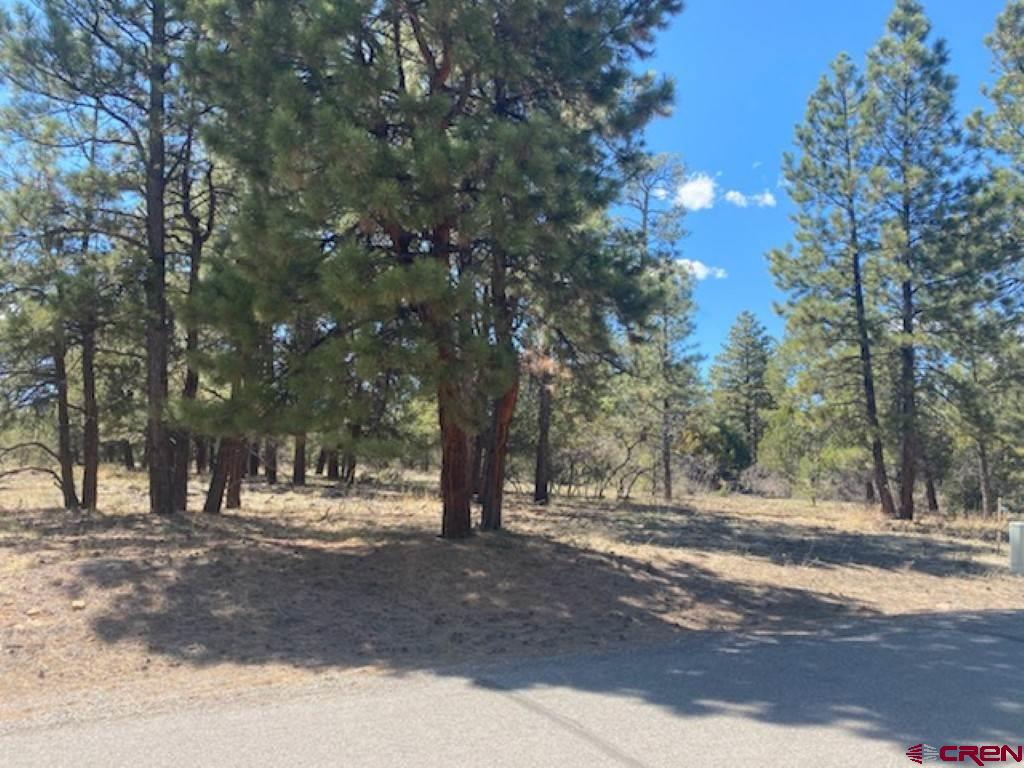 Wonderful lot just steps from world class golf at Divide Ranch and Club.  Paid water tap and underground utilities to lot line.  Build your dream home here and enjoy the peace and quiet of country living just 15 minutes from Ridgway.  And you're just 30 minutes from Montrose Regional Airport or 45 minutes from world renowned skiing in Telluride.  Priced to sell!!
