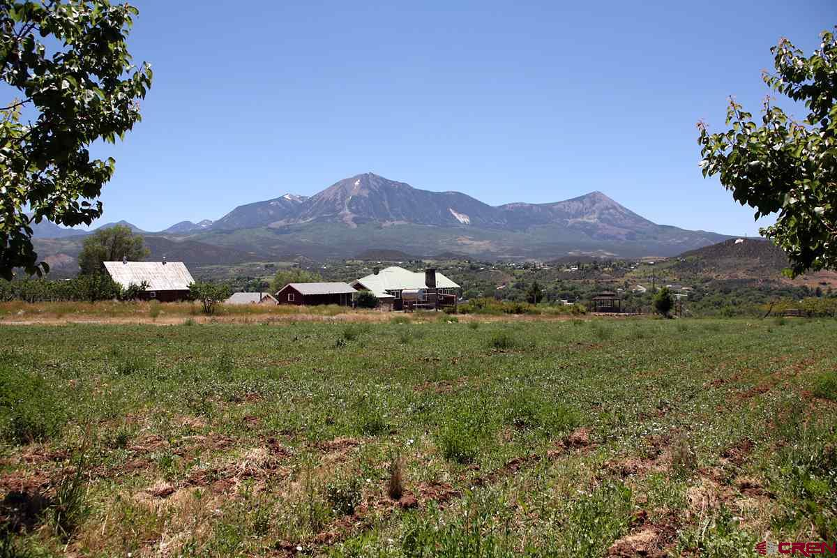 A spectacular, sunny, south-facing paradise! This 8 acres overlooks the town of Paonia and is graced with tremendous views of the West Elks, Mount Lamborn, Landsend Peak, and the North Fork Valley. Abundant water provides plenty of hydration to productive, organic apricot trees and lush grass. Perfect for your custom home, this property provides privacy, convenience to town, and out-of-this-world views. Covenants protect the beautiful and well maintained rural neighborhood on this picture-perfect hill. Come on over to Paonia to experience the magic that this community amongst the mountains radiates!