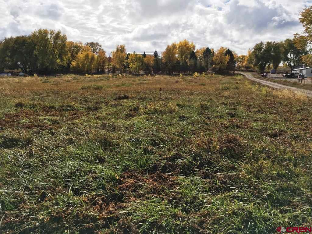 What an awesome view!  Fabulous building site as well, comes with a paid & installed Tri-County Water Tap and piped irrigation water as well!  This is a really sweet property with a big view of Grand Mesa!  Come check this one out today!