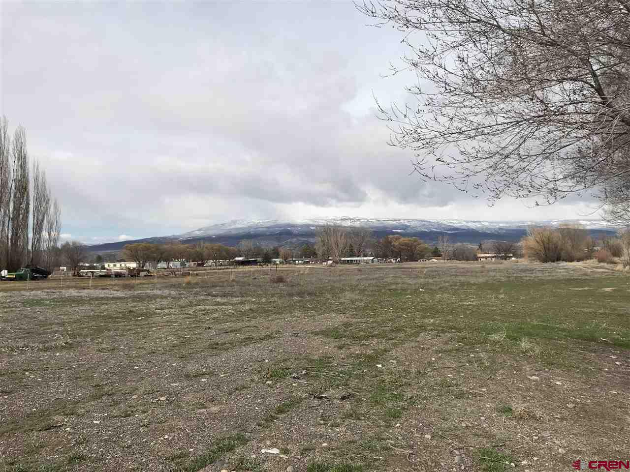 Acreage? In Town? YES! 6.48 acres with 6.8 shares of UVWUA irrigation water. Water and sewer tap available. Awesome views of the Grand Mesa. Plenty of room to build your dream home and space for critters!
