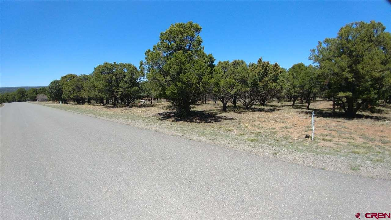 This wonderful lot is peaceful and quiet with mature Pinyon trees, Junipers, native grasses and wildflowers. Lots of wildlife. All utilities are available at the lot line and the lot is entirely usable. Paved road all the way to town. Close to Divide Golf course and millions of acres of public lands and activities. 45 minutes from world class skiing at Telluride. A short walk down Tower Road to a bench with the most incredible views or stroll the maintained subdivision trail system. Most two story homes have nice mountain views. Property has a paid water tap.