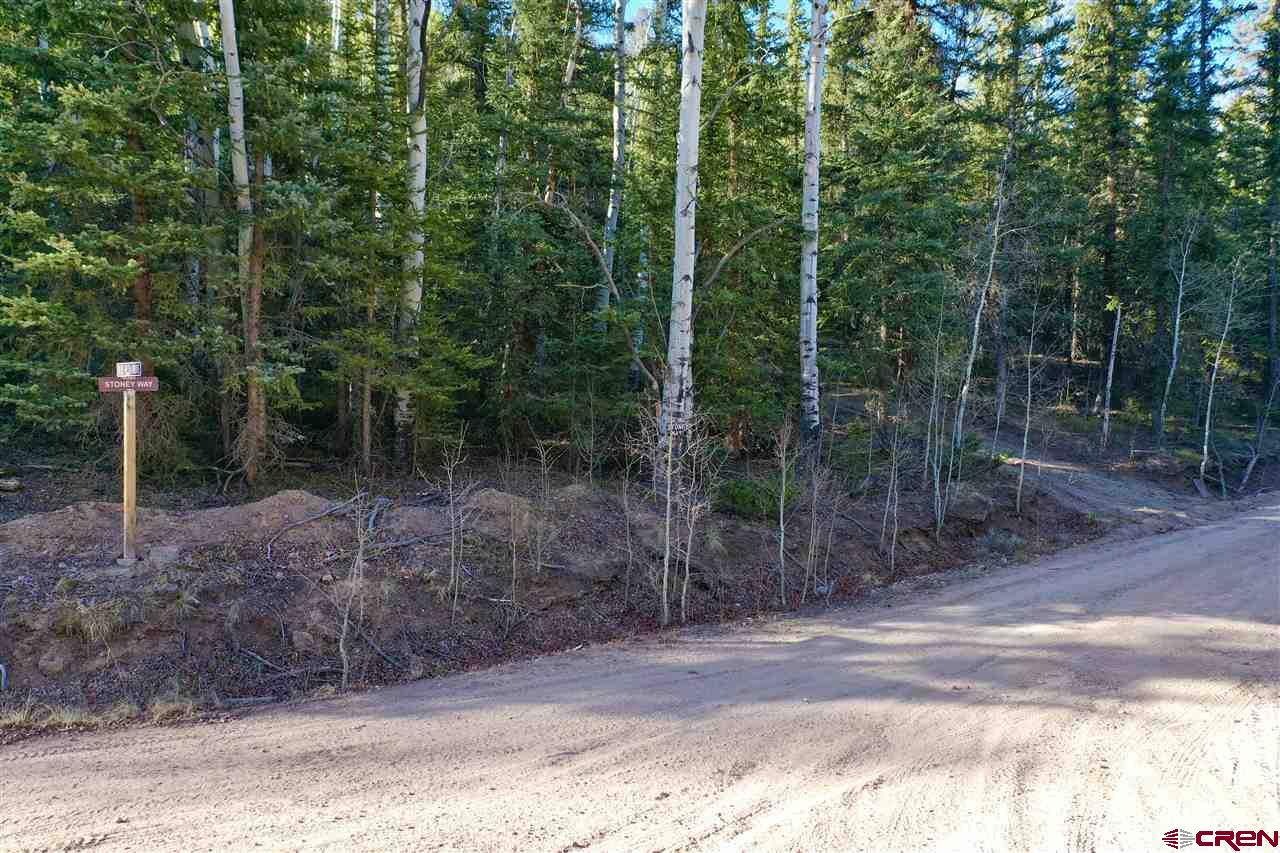3605 Blue Mesa Drive, Gunnison, CO 81230