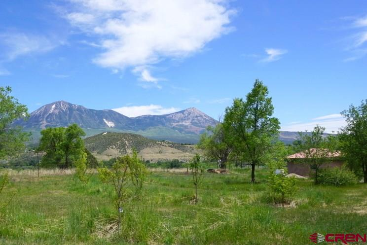 Fabulous edge of Pitkin Mesa location with views of the mountains to include Mount Lamborn, Landsend, the West Elks and the Raggeds, not to mention a nice valley view and foothills behind.  Flat building site has been cleared. There is power and internet to the lot line. The property has 3.5 acres game fenced and Seller has a young orchard of 20 trees to include: apple, peach, cherry and pears. The trees are on drip irrigation. There is also a straw bale round yurt-like building that has approximately 400 square feet and is unfinished..  This building has not been plumbed or had electric brought to it.  There is a water hydrant on the property and the irrigation is efficiently piped into the property.  There is also an unfiled spring located on the property.