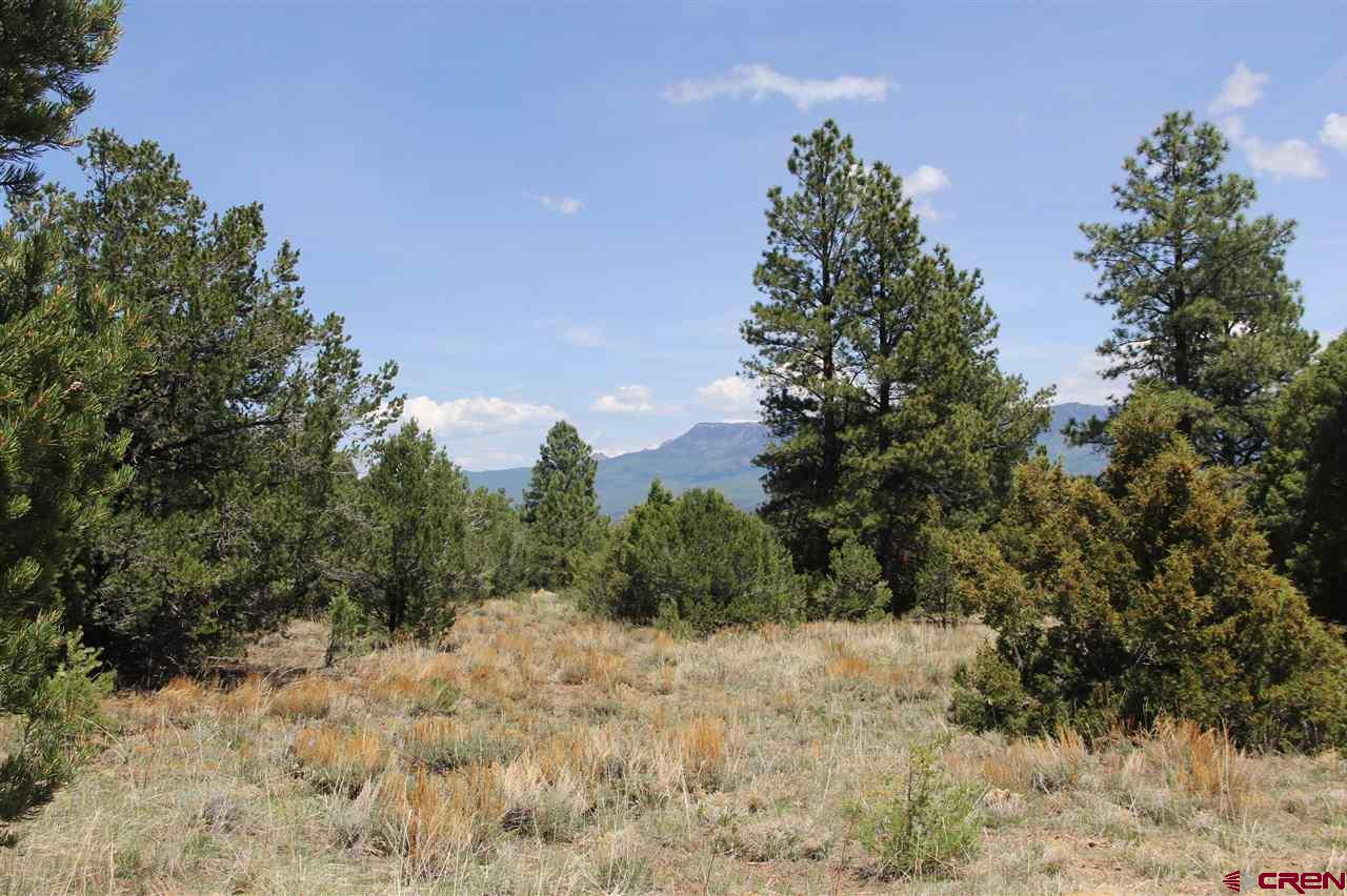 Come enjoy the views from this lot situated on the 17th Hole Tee Box on the Divide Ranch Gold Course that currently backs up to open space. With skiing, fishing, hiking and everything outdoors near by, you can build your own home on this lot. The lot includes founder golf membership with divide ranch golf course. Come enjoy the deer and elk in this beautiful landscape. Golf course founder membership dues are $1,643.59 This covers the golf membership.
