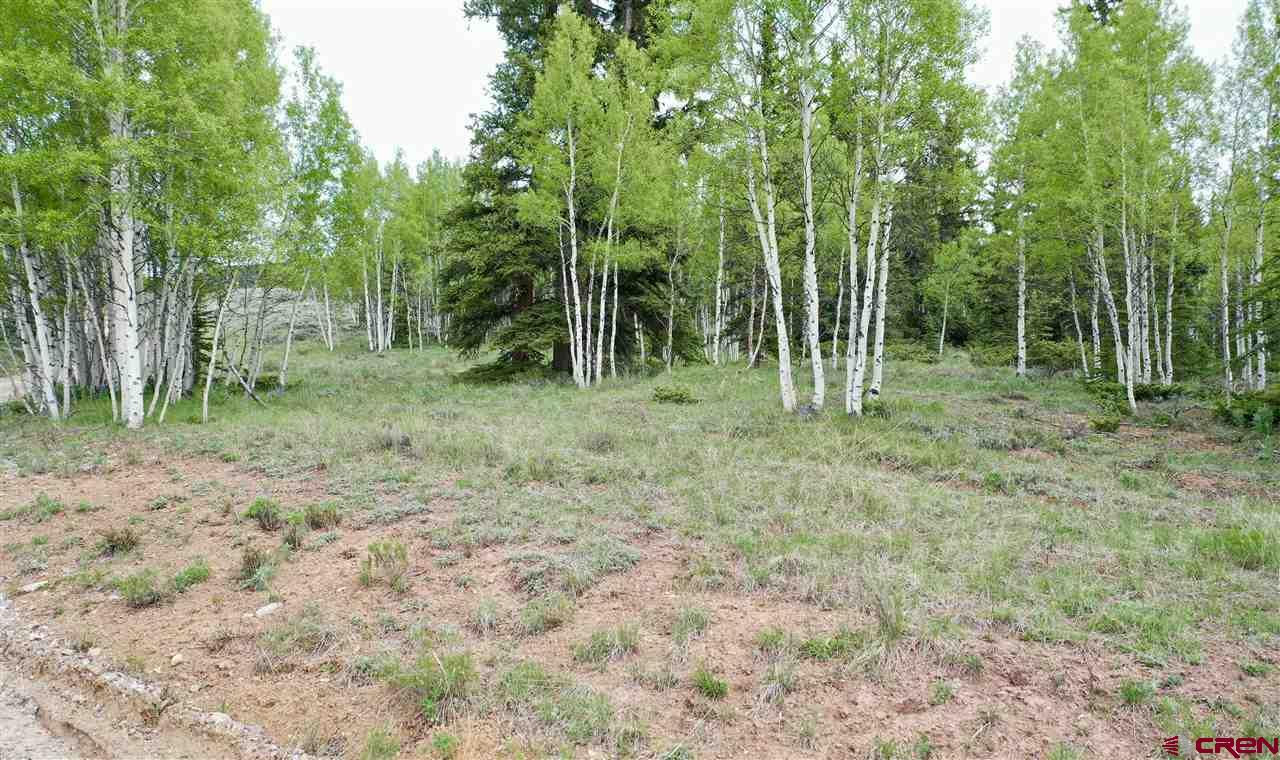 500 Forest Service Road 770, Pitkin, CO 81241