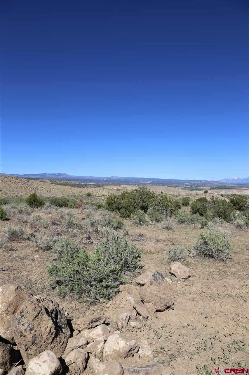 Hunting area 411. Foothills of the Grand Mesa, 35 + acre parcels.  12 parcel subdivision.  Year round access.  Live water on 8 lots. 60 ft. utility easement access. Terrific views, seasonal RV's welcome, modular homes fine, perfect spot for solar power, propane delivery access, septic tanks OK!  30 minute drive from Delta.  Close to shopping, fishing on the Grand Mesa.  Everything is close but you feel a thousand miles away. Livestock Allowed!  OWNER FINANCING AVAILABLE WITH TERMS!!!  60 Ft Access & Utility Easement