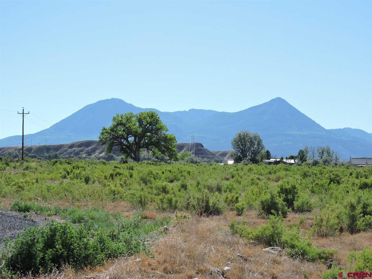 Nice four acre lot close to town but very quiet and secluded.  This subdivision is made up of ten lots.  The building site offers panoramic views of the West Elks, the Grand Mesa and up the North Fork Valley toward the Raggeds.  The site is nice and flat, has some mature trees in place and is ready to build on.   The lot owners (10) each own a 1/10 interest of a 26 acre open space.  It is a beautiful, natural mixture, of wetlands, grassy parks and cottonwood bosque.  The North Fork of the Gunnison flows on the western boundary of the park providing river access.