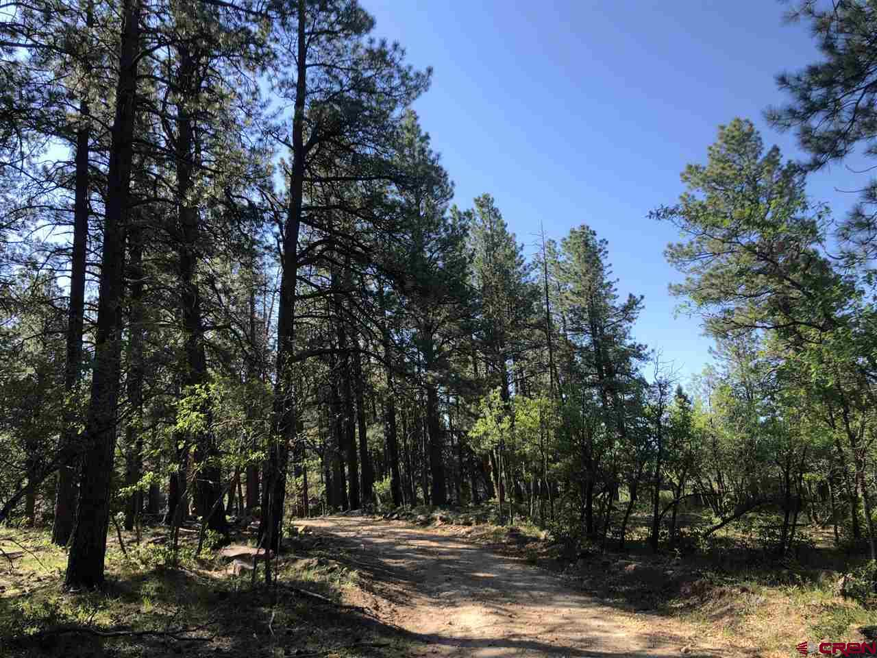 MLS# 770849 - 6 - 38286 Road N 37.6933124427187, Dolores, CO 81323