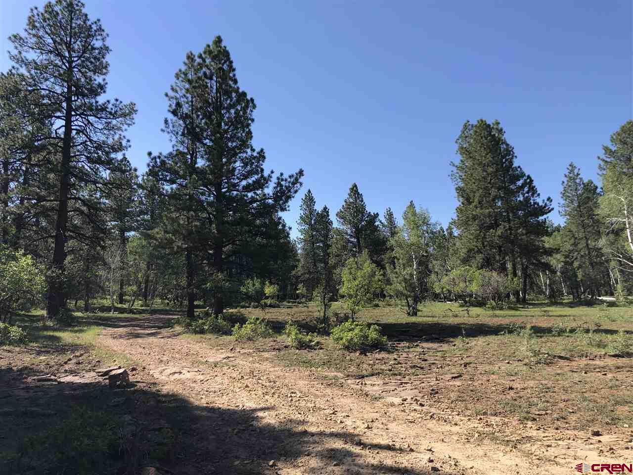MLS# 770849 - 38286 Road N 37.6933124427187, Dolores, CO 81323