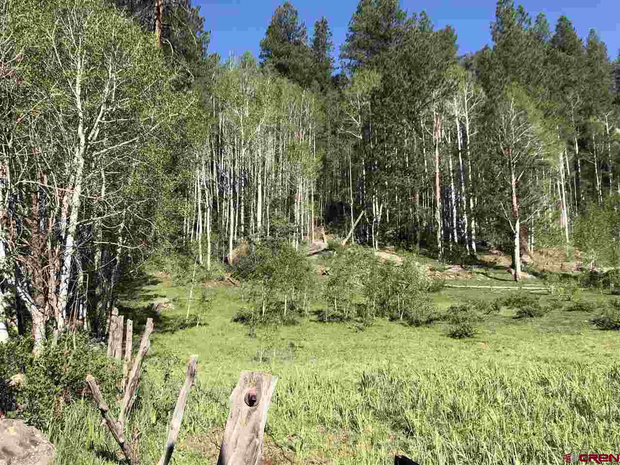 MLS# 770851 - 2 - 38165 Road N , Dolores, CO 81323