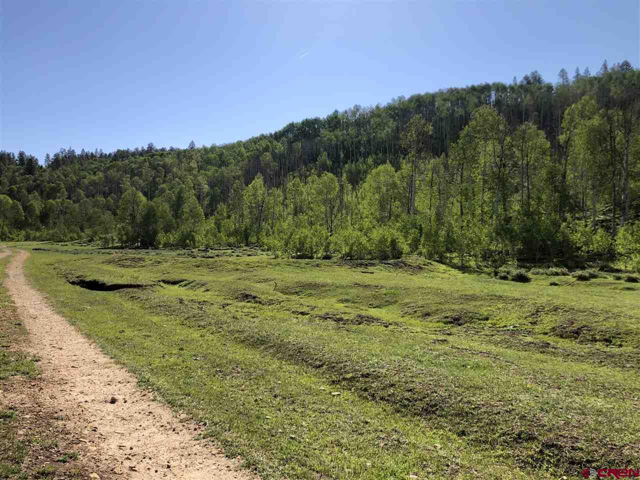MLS# 770851 - 4 - 38165 Road N , Dolores, CO 81323