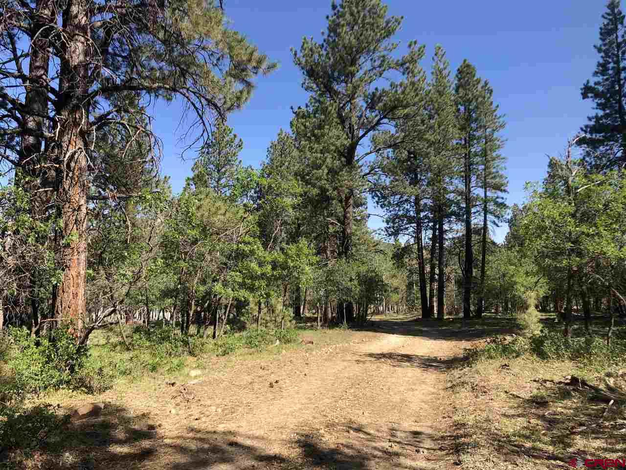 MLS# 770851 - 7 - 38165 Road N , Dolores, CO 81323