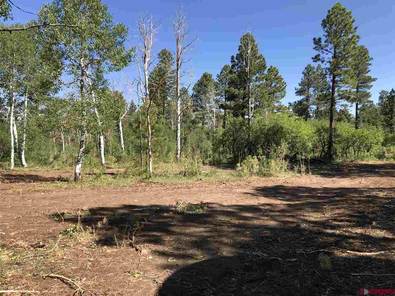 MLS# 770851 - 9 - 38165 Road N , Dolores, CO 81323