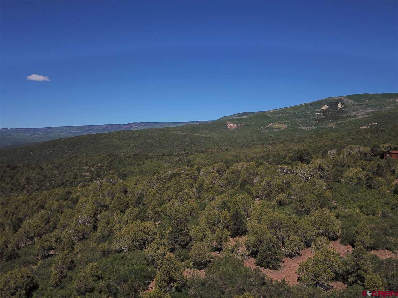 "If you are looking for Colorado Mountain property, peace and quiet with awesome mountain views, this is the perfect location for you.  A little piece of ""Paradise"" located at the base of the Grand Mesa, the largest flat top mesa in the world.  Build your dream home nestled within the 40.15+- acres of undisturbed pinons and junipers.  Property is eligible for a well permit.  No Covenants, Deed Restrictions or HOA, year round access.  Electricity located @ the NE corner of the property.   Please check out the aerial virtual tour of the property to get an ideal of the location and surroundings."