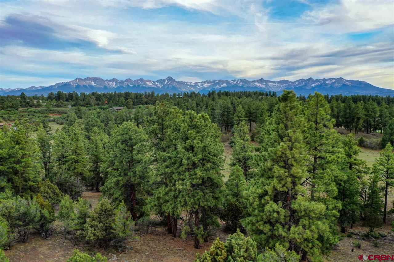 This 1.2 acre lot in Fairway Pines Estates is unique due to the prime location on White Tail Lane. The topography drops away from the level building site, with open space to the south and west protecting the views. Enjoying both San Juan and Cimarron mountain range views, this is the lot your high-end clients should consider to ensure their future investment. Don't make the common mistake of building a great house on a cheap lot, then wondering why it won't sell. Overlooking the Divide Ranch Golf Course, there are a number of nice homes in the vicinity which further help to define the building envelope. The building site is partially cleared in a manner that naturally compliments both mountain ranges. All utilities are stubbed to the property. The price also includes one paid Dallas Creek Water water tap.