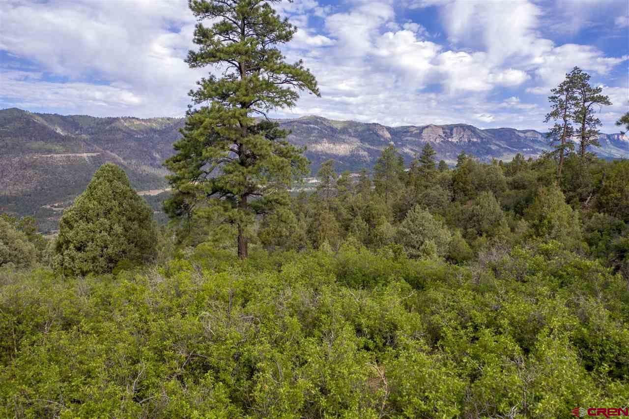 MLS# 771397 - 20 - 4113 Elkhorn Mountain Road, Durango, CO 81301