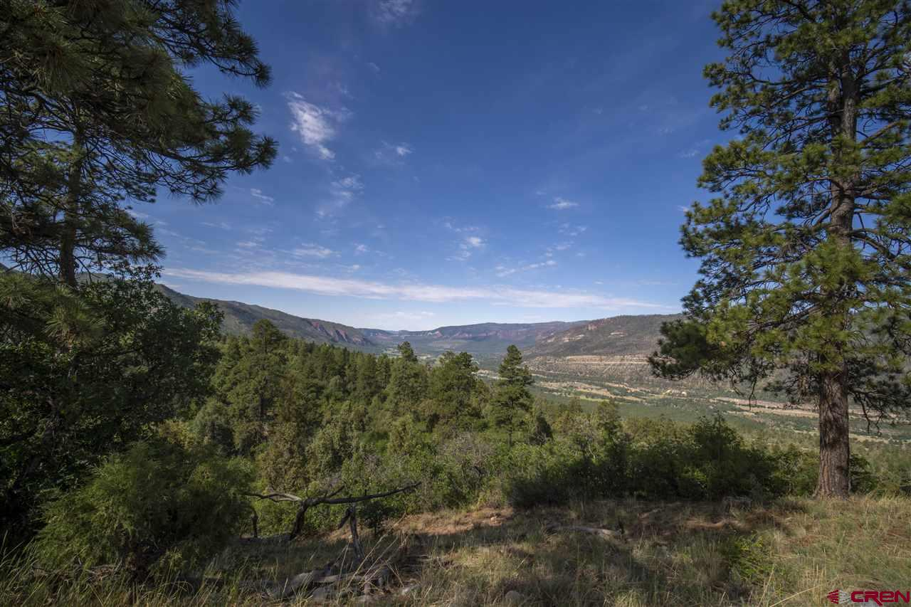 MLS# 771397 - 5 - 4113 Elkhorn Mountain Road, Durango, CO 81301