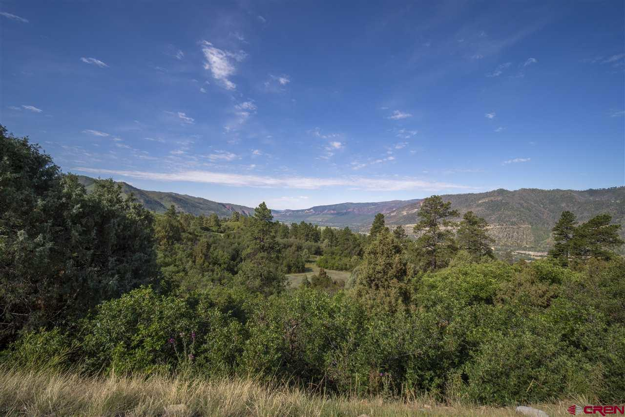 MLS# 771397 - 6 - 4113 Elkhorn Mountain Road, Durango, CO 81301