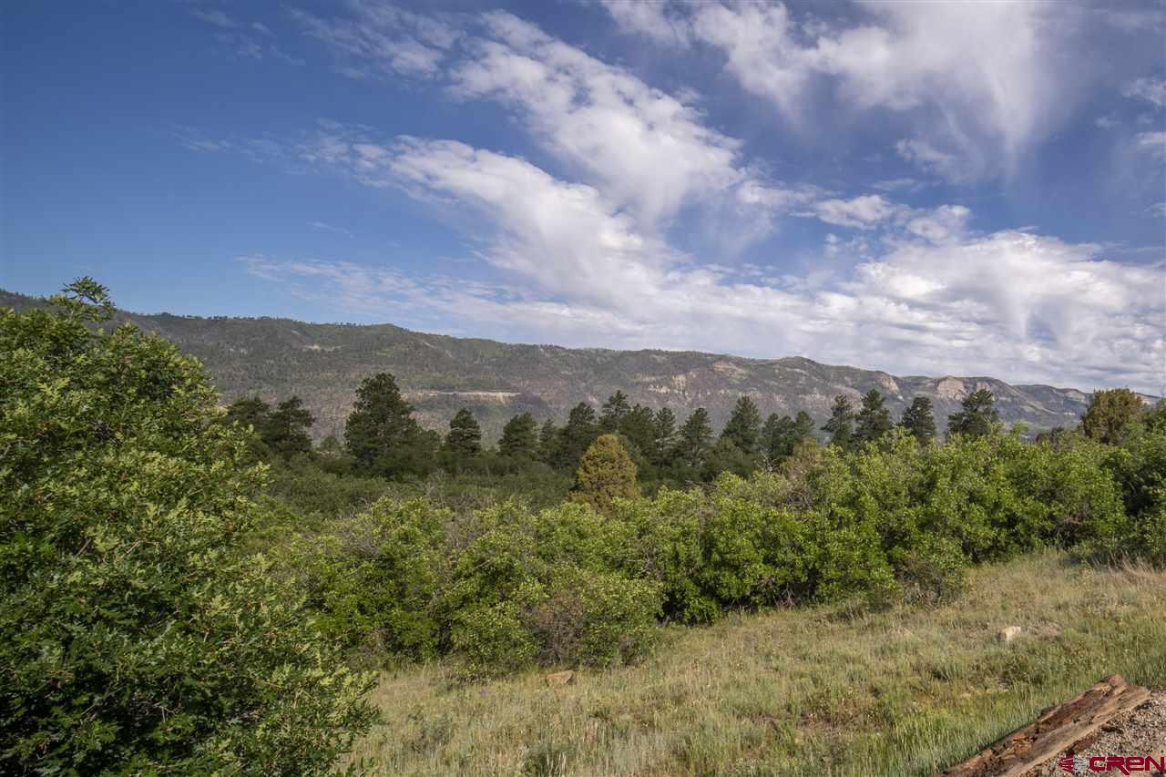 MLS# 771397 - 8 - 4113 Elkhorn Mountain Road, Durango, CO 81301