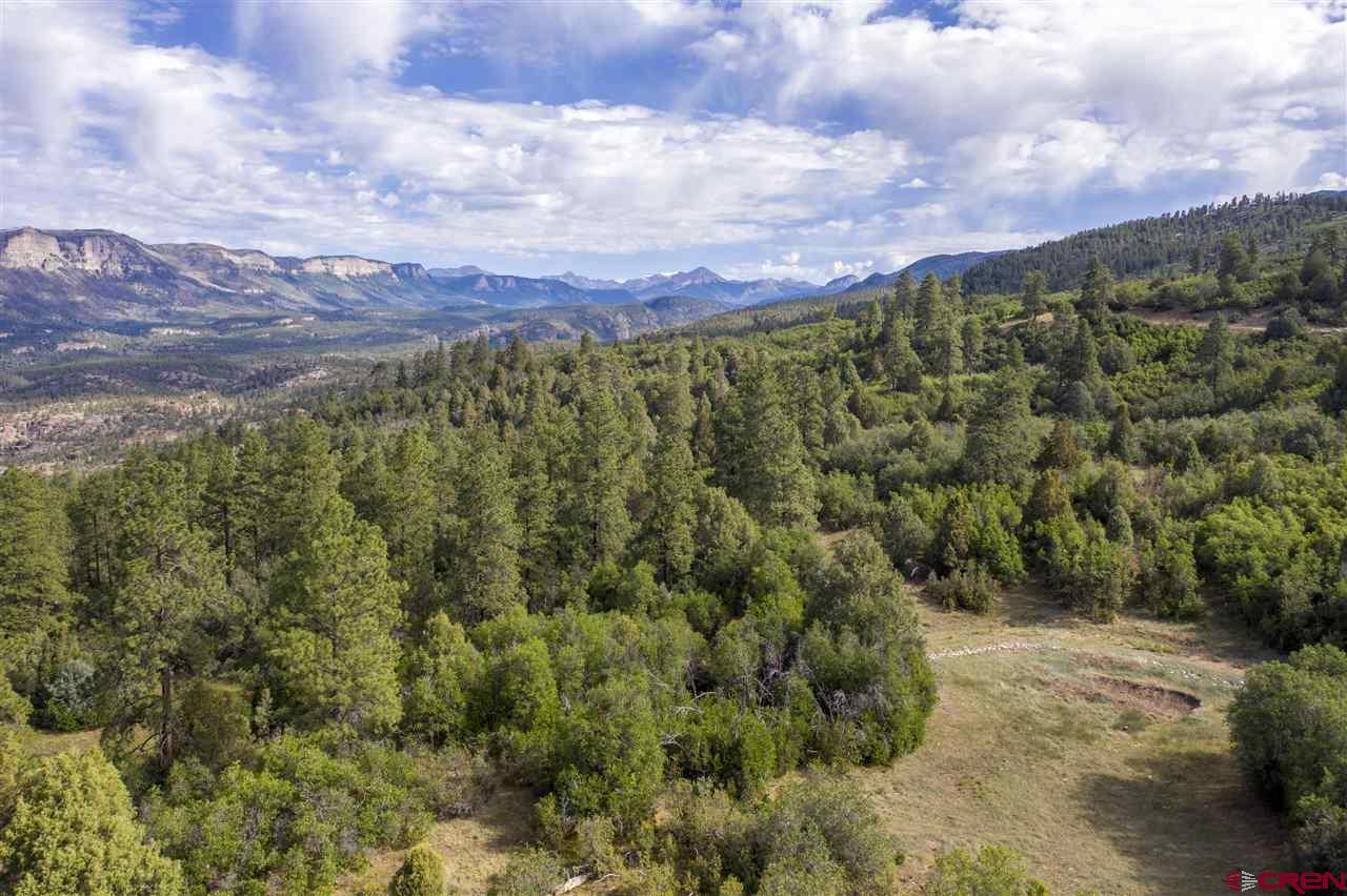 MLS# 771397 - 10 - 4113 Elkhorn Mountain Road, Durango, CO 81301