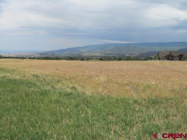 9.55 acres with wonderful views.  You can enjoy views of the Grand Mesa, San Juan Mountains, and even the night lights of down valley.  It has a full share of Surface Creek Ditch and Reservoir company as well.  A lovely country feel only minutes from town.  Located at the base of Grand Mesa with miles of open land for outdoor recreation.  This property is worthy of building your dream home on.  It comes with a paid and installed Orchard City domestic water tap and has a transformer on the property that might work to service the home.  Buyers will want to confirm that with DMEA.  This is a wonderful property! Come take a look!