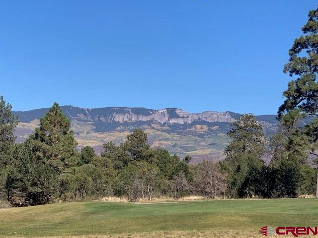 Gorgeous views of the green on the 11th hole and unobstructed Cimmaron mountain views with alpen-glow in the evening. Ponderosa pines tower over this beautiful easy build lot. Build package available. Lot is on the community sewer system which saves cost of engineered septic.  Play unlimited golf (cart fees only) with your Founders Club membership in the summer and cross country ski or snowshoe right our your door in the winter. With Ridgway and Ridgway State Park only 7 miles away,  Ouray 17 miles and Telluride only 35 miles you have the splendor and beauty of the Western slope and its wide array or outdoor recreation; hiking, mountain climbing, ice climbing, biking, fishing, skiing