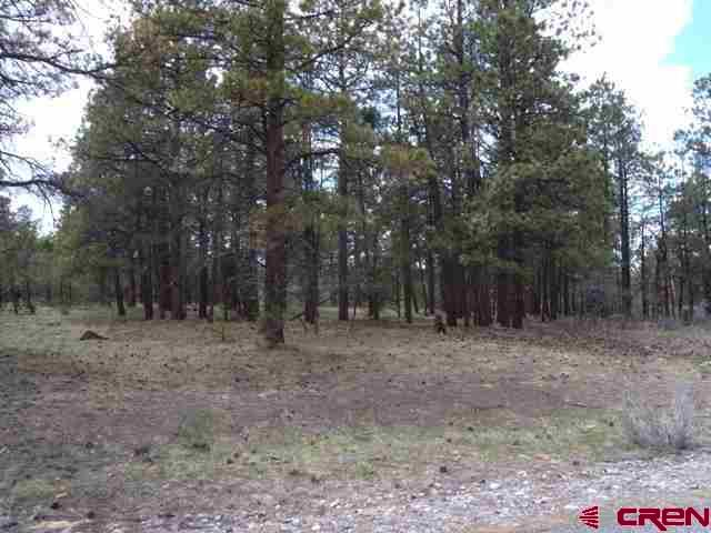 Looking for a Fairway Pines with golf course frontage? This nicely treed lot is on the 2nd tee box, has many large mature Ponderosa Pines as well as pinion trees.