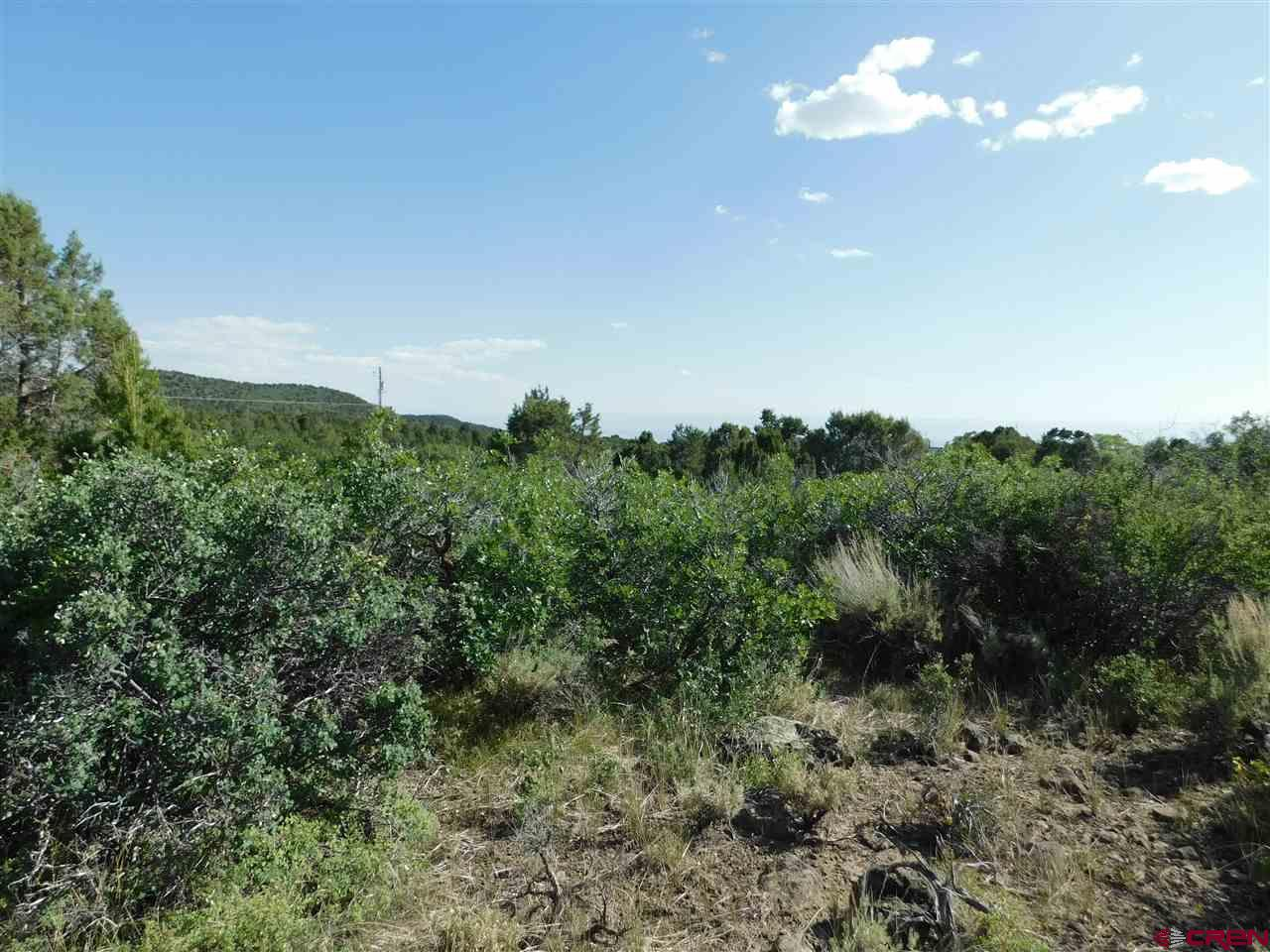 Build your dream Colorado Mountain home here! Amazing Views from this 2 acre parcel that borders Milk Creek. Paid and installed Upper Surface Creek domestic water tap. Nearby installed fire hydrant for better home insurance rates. No mobile homes but modular homes permitted. Livestock allowed. Located North of Cedaredge, close to town and the Grand Mesa!!