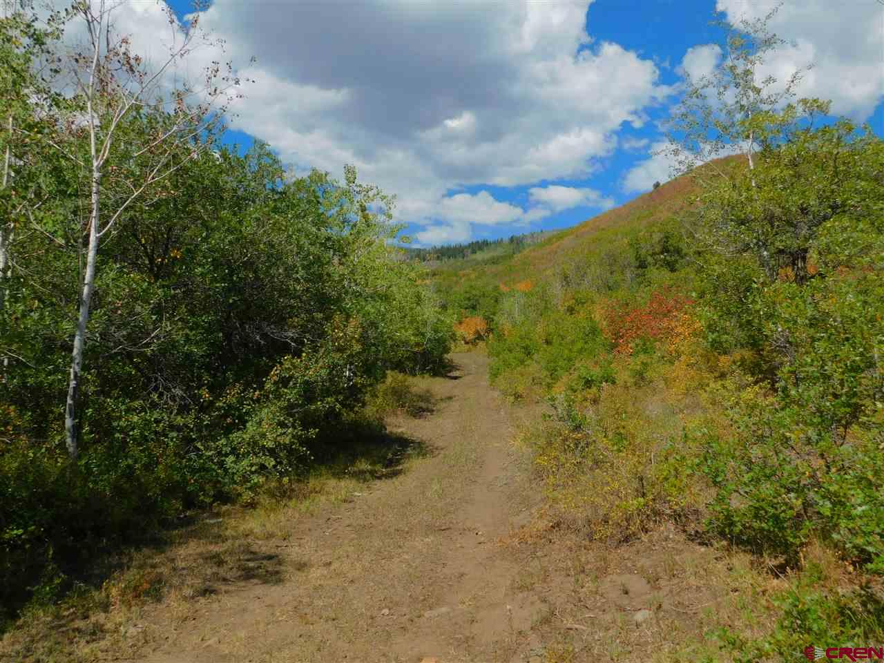 35 acre mountain property.  Live water with Ward creek and Orchard city ditch running through the property.  End of the road location.  Great views of the valley below.  Forest access.  Subdivision has private roads and Locked gate. Two lots available (lot 6 and 12).