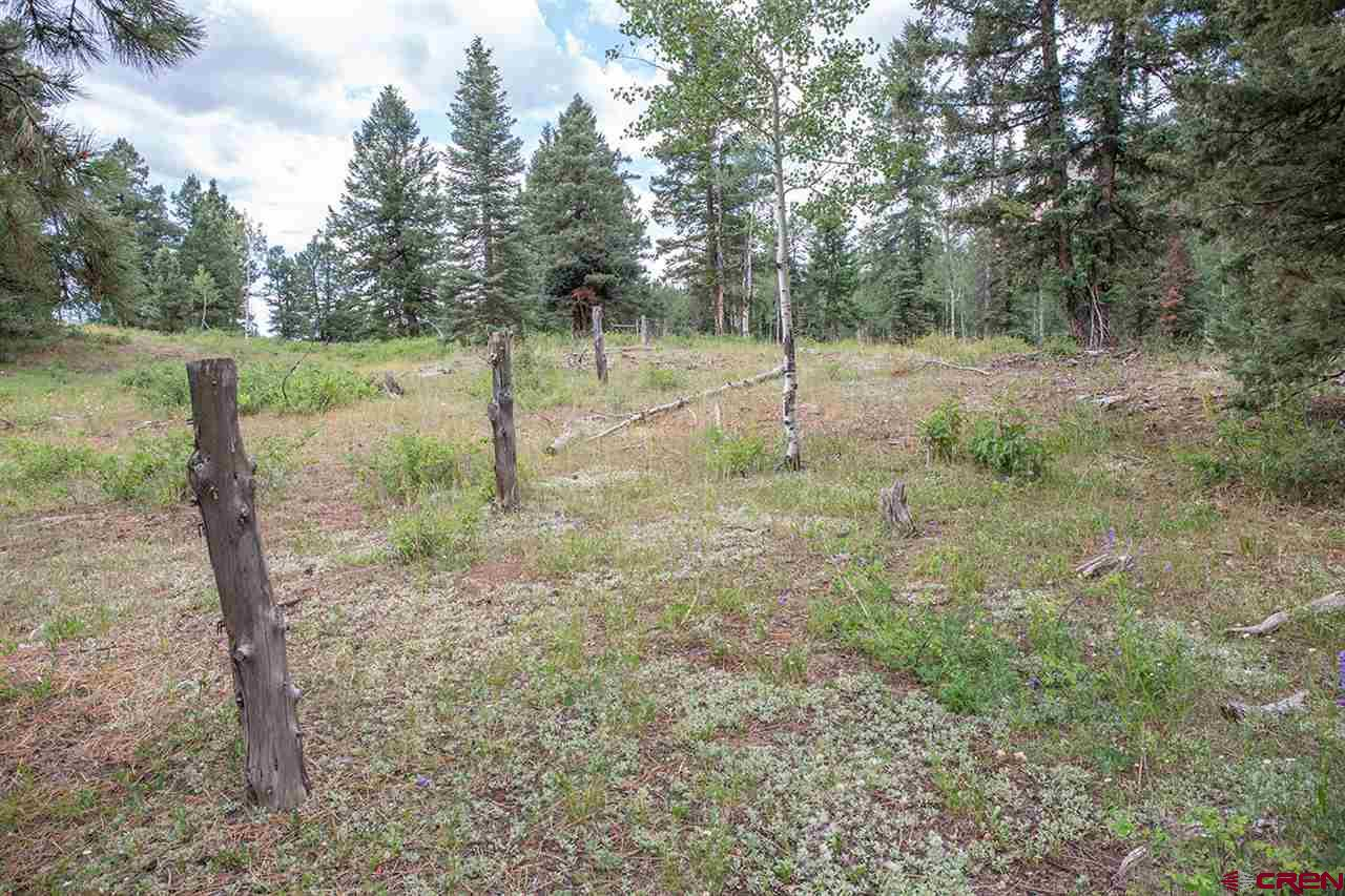 MLS# 772758 - 46773 N Highway 550 , Durango, CO 81301