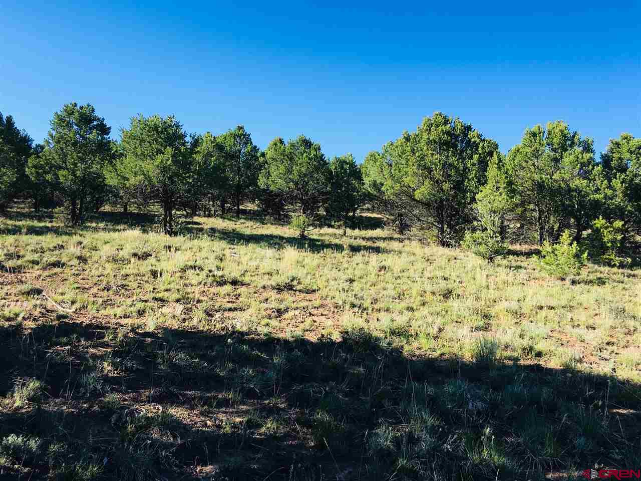 Gorgeous soft sloping lot, which when built upon could provide Cimarron views, mountain views to the North East, and privacy. This lot has a PAID water tap. A $7,000 value. This lot borders a walking trail/open space to the West. The home to the East is already in place.  Nicely populated with Pinion Pines and Juniper, there are a couple of open areas for potential build sights.   Whether you are coming or going from Loghill Village, the subdivision offers some of the most spectacular views in the county. Ponderosa Drive is a well maintained road year round. If golf is your thing, it's just down the road.  Relax into living with an abundance of wildlife, walking trails, biking options, or a quiet moment at home.  Is this lot looking for you? Please stop by and check it out.   Please note: The subject photo was taken standing low - in the doorway of a car to show potential views.