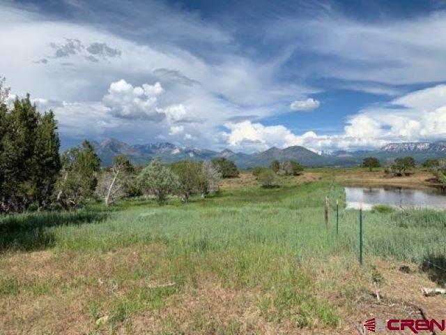 Beautiful lot just under 5 acres located on Fruitland Mesa. The property has scattered cedar trees and wide open space filled with grass. A corner of the acreage shares a seasonal pond. Plenty of blue sky, fresh air and views of the West Elks Mountains. Water tap is paid and electric is on the property.
